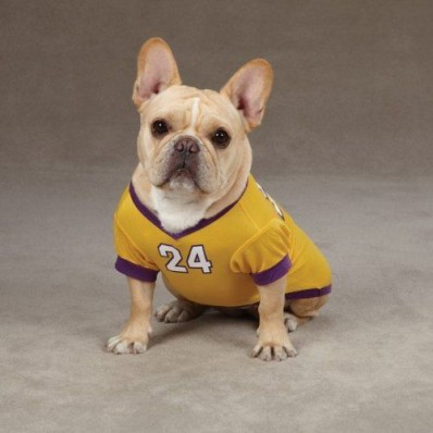 lakers jersey for dogs kobe