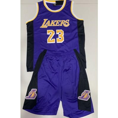 lakers jersey lebron james kids with shorts