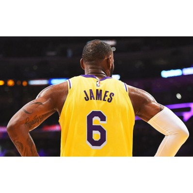 lebron james jersey number 6 lakers