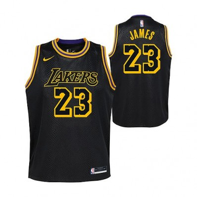 lebron james lakers jersey black youth