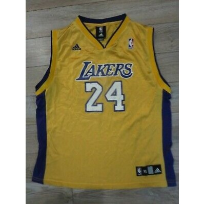 nba jersey youth. los angeles lakers